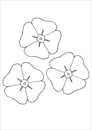 Beautiful Poppy Colouring Page Free Printable