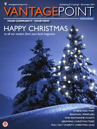 Christmas Tree Aphids Uk by Vantagepoint Magazine December 2014 Godalming Cranleigh