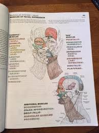The Anatomy Coloring Book 4th Edition West Shore Langford Colwood