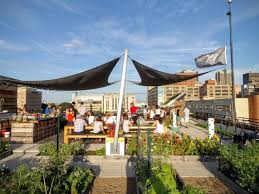 Bison Deck Supports Canada by Bison Innovative Products Archives Greenroofs Com Sky Gardens Blog