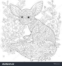 Stylized Fennec Fox And Mallow Flowers Freehand Sketch For Adult Anti Stress Coloring Book Page
