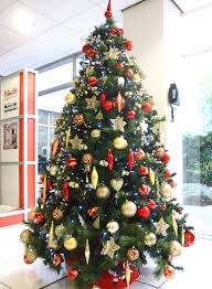 8ft Christmas Tree Uk by Christmas Tree Hire In Birmingham Services Office Landscapes