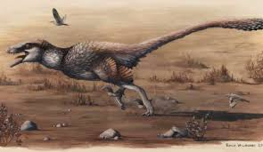 The Fossils Of Two Exceptionally Large Feathered Dinosaurs Have Been Discovered In A Rock Quarry South Dakota Find That May Help Answer Some Crucial