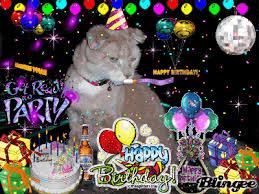 Happy Birthday From PJ