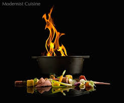 modern cuisine modernist cuisine the and science of cooking