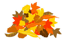 Fall leaf pile clipart