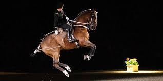 equitation française au patrimoine de l unesco réactions du