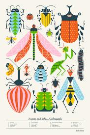 Mcswain Flooring Blue Ash by Best 25 Clinton Ideas On Pinterest Bug Images Clinton N
