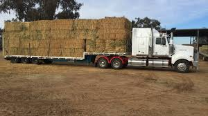 Government Eases Restrictions On Transport Of Hay For Drought | Blue ... Truck Carrying Hay Rolls In Davidsons Lane Moore Creek Near Hay Ggcadc Flickr Bale Bed For Sale Sz Gooseneck Cm Beds Parked Loaded With Neatly Stacked Bales Near Cuyama My Truck And The 8 Rx8clubcom On A Country Highway Stock Photo Image Of Horse Ranch Filescott Armas Truckjpg Wikimedia Commons Hits Swan Street Richmond Rail Bridge Long Delays Early Morning Fire Closes 17 Myalgomaca Oversized Load On Chevy Youtube Btriple Trucks Allowed Oxley To Ferry Relief The Land A 89178084 Alamy