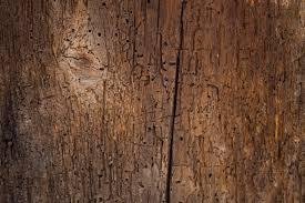 Old Wood Texture Decor Ideas