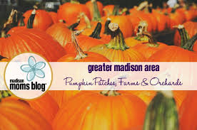 Pumpkin Farms In Wisconsin Dells by 2017 Farms Pumpkin Patches U0026 Orchards Greater Madison Area
