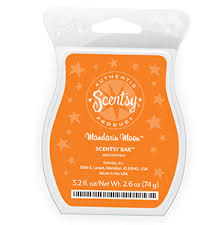 Pumpkin Scentsy Warmer 2012 by October 2012 Scentsy Warmer Of The Month Turkey Scentsy Warmer