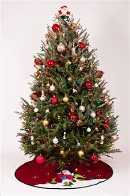 Americas Most Popular Christmas Tree