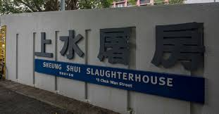 100 An Shui Wan Govt Sees No Need For Cull Despite 3 New Swine Fever Cases