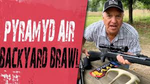 Airgun Fun And Extra CASH PRIZES! - Pyramyd Air's Backyard Brawl Icon Supplements Coupons No Body Shame Coupon Code Eastbay 20 New Whosale Pyramyd Air Location Discount Auto Parts Chocolategelt Com Horse And Hound Car Mechanic Free Sports Recreation Online Coupon Codes Deals Benjamin Air Rifle Paytm Promo Canada June 2019 J Crew Shoes