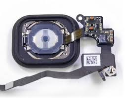 The iPhone 5s Home Button is Not Repairable