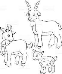 Coloring Pages Farm Animals Goat Family Royalty Free Stock Vector Art