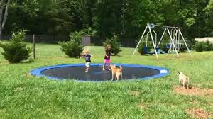 DIY In-Ground Trampoline - YouTube | Get Outta Here | Pinterest ... Shelley Hughjones Garden Design Underplanted Trampoline The Backyard Site Everything A Can Offer Pics On Awesome In Ground Trampoline Taylormade Landscapes Vuly Trampolines Fun Zone 3 Games For The Family Active Blog Wonderful Diy Recycled Chicken Coops Interesting Small Images Decoration Best Whats Reviews Ratings Playworld Omaha Lincoln Nebraska Alleyoop Kids Jump And Play On In Backyard Stock Video How To Buy A Without Killing Your Homeowners Insurance