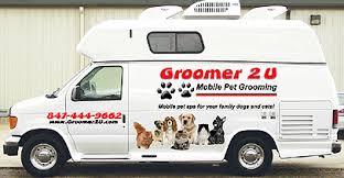mobile cat grooming mobile pet groomer scottsdale az pet grooming scottsdale az
