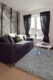 curtains living room an accessory with many features fresh