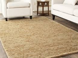 Home Decor Perfect 10x12 Outdoor Rug With Rug Lowes Area Rugs