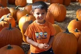 Woodside Pumpkin Festival by Happy Days