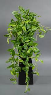 syngonium ranke real touch 65cm grün gelb zf kunstpflanzen