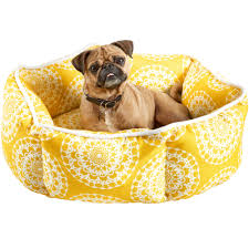 Cuddler Dog Bed by Buyer U0027s Guide The Best Dog Beds Deine Schoenheit Ist Nichts Wert