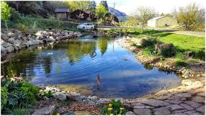 Waterfalls And Ponds – Dawnwatson.me 67 Cool Backyard Pond Design Ideas Digs Outdoor With Small House And Planning Ergonomic Waterfall Home Garden Landscaping Around A Pond Flow Back To The Ponds And Waterfalls Call For Free Estimate Of Our Back Yard Koi Designs Febbceede Amys Office Large Backyard Ponds Natural Large Wood Dresser No Experience Necessary 9 Steps Tips To Caring The Idea Pinterest Garden Design