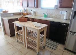 Kitchen Pantry Storage Cabinet Free Standing by Cabinet Brilliant Kitchen Pantry Storage Cabine Dramatic