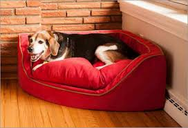 Tempur Pedic Dog Beds by Top 9 Best Dog Beds In 2017 Dog Bed Reviews U0026 Buying Guide