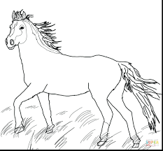 Horseshoe Magnet Coloring Page Horse Pictures For Adults Book Online Wild Pages Horses Barrel Racing