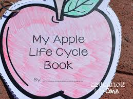 Pumpkin Stages Of Growth Worksheet by A Week Jam Packed With Apple Life Cycle Fun Education To The Core