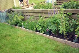 How To Start Growing Vegetables: Start Small | My Shetland Garden 38 Homes That Turned Their Front Lawns Into Beautiful Perfect Drummondvilles Yard Vegetable Garden Youtube Involve Wooden Frames Gardening In A Small Backyard Bufco Organic Vegetable Gardening Services Toronto Who We Are S Front Yard Garden Trends 17 Best Images About Backyard Landscape Design Ideas On Pinterest Exprimartdesigncom How To Plant As Decision Of Great Moment Resolve40com 25 Gardens Ideas On