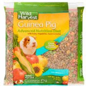 Pine Bedding For Guinea Pigs by Small Animals Walmart Com