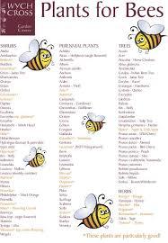 best 25 honey bee pollen ideas on honey bee hives