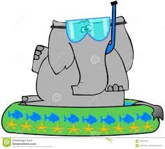 Download Elephant In A Kiddie Pool Stock Illustration Of