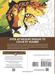 Awesome Design Color By Number Books For Adults Amazon Creative Haven Wildlife Coloring