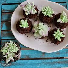 Edible Succulent Terrarium Cupcakes This Is An Adorable Dessert Or Centerpiece For Summer Time
