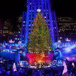Rockefeller Christmas Tree Lighting 2017 by Christmas Tree Lighting Rockefeller Center 2017 Throughout