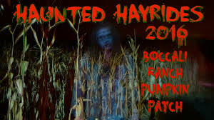 Boone Hall Pumpkin Patch And Corn Maze by Haunted Hayrides 2016 Ojai Boccali Ranch Pumpkin Patch Youtube
