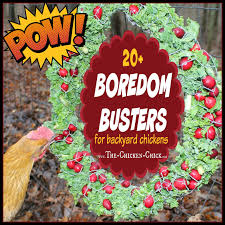 The Chicken Chick®: 20+ Winter Boredom Busters For Backyard Chickens! Diy Treat Basket Backyard Chickens Treating Bumblefoot In Chicken Coops Homemade Coops Backyard Chickens Page 1 Garden Delights Homemade Scratch Block And Boredom Buster For 175 Best Homestead Images On Pinterest Backyard Chickensthe Girls Get Treats Being Good Layers The Chick 20 Winter Busters Causes Prevention Treatment Treats Guide Dont Love Your Pets To Getting A Cold Treat Youtube Learn The Benefits Of Pumpkin Your Flock From Tillys