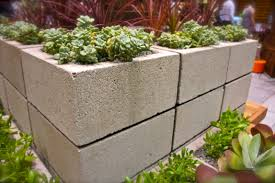 Ideas And Inspiration For A Modern Ve able Garden loversiq