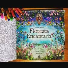 Beautifully Done Title Page Johanna Basford Enchanted Forest Secret Garden Adult Coloring Colored Pencil DrawingsColored PencilsPen