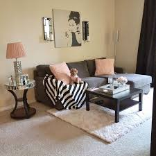 Apartments Decor For Apartement With Simple And Elegant Apartment