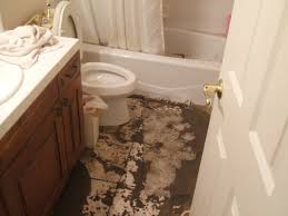 Bathroom Sink Smells Like Sewer by Drain Cleaning Archives Plumber Emergency Plumbing Knoxville