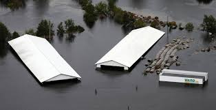 Florence Flooding Hits North Carolina Hog Farms Hard - WSJ Ward Freight Saigon Newport Cporation Ppt Download Trucking News Ward Trucking Tracking Best Image Truck Kusaboshicom Safety Exemptions For Livestock Haulers Raise Concerns Others On Usf Conway Junction Lands Fast Track Flatbed Companies Directory Alicia Branch Operations Codinator Penske Leasing Hshot Trucking Pros Cons Of The Smalltruck Niche