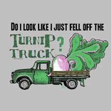 Fall Off The Turnip Truck 8 Best Beer Season Images On Pinterest Truck And Trucks Falling Off The Turnip Tuesday Tip The Schulz Blog 1768156 Artistannon Big Breasts Bimbo Busty Scitwi A Kiss For Lizzie Tayloe Letter Collection Shell Twitter Truth Is I Feared For My Life Read How Newsletters Page 3 Quilts From Casa Nana She Did Fall Off Turnip Truck Hornswoggled Welcome To Gerald Missourah Town That Did Just Amazoncom Slate Grey Religious Sign Saying Didnt Jericho Settlers Farm Inc Because You Didnt Just Fall Instructional