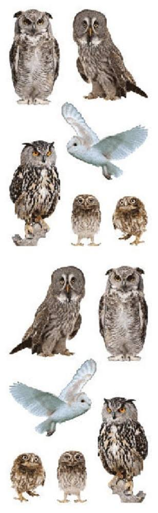 Full Roll - Mrs Grossman S Stickers - Owl - Animal Photos