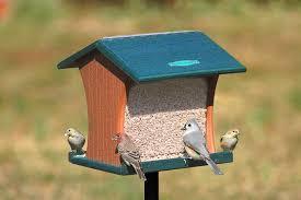 Duncraft Duncraft Eco Strong Pole Mount Hopper Bird Feeder